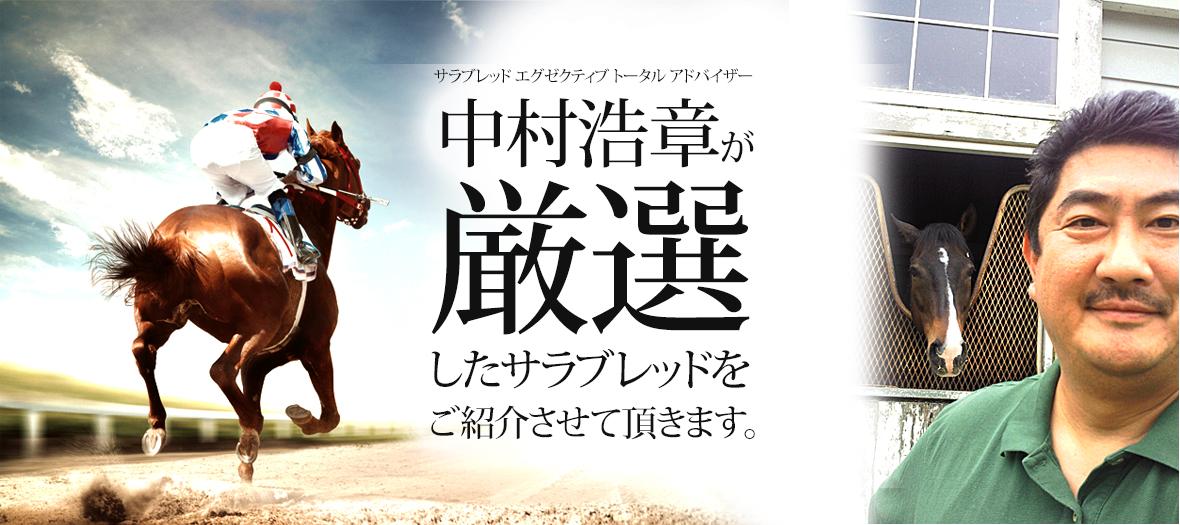 サラブレッド エグゼクティブ トータル アドバイザー 中村浩章が厳選したサラブレッドをご紹介させて頂きます。